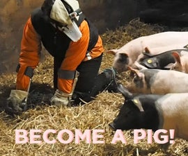 The Pig Empathy Suit