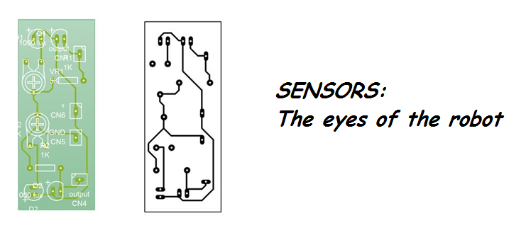 Picture of SENSORS: the Eyes..
