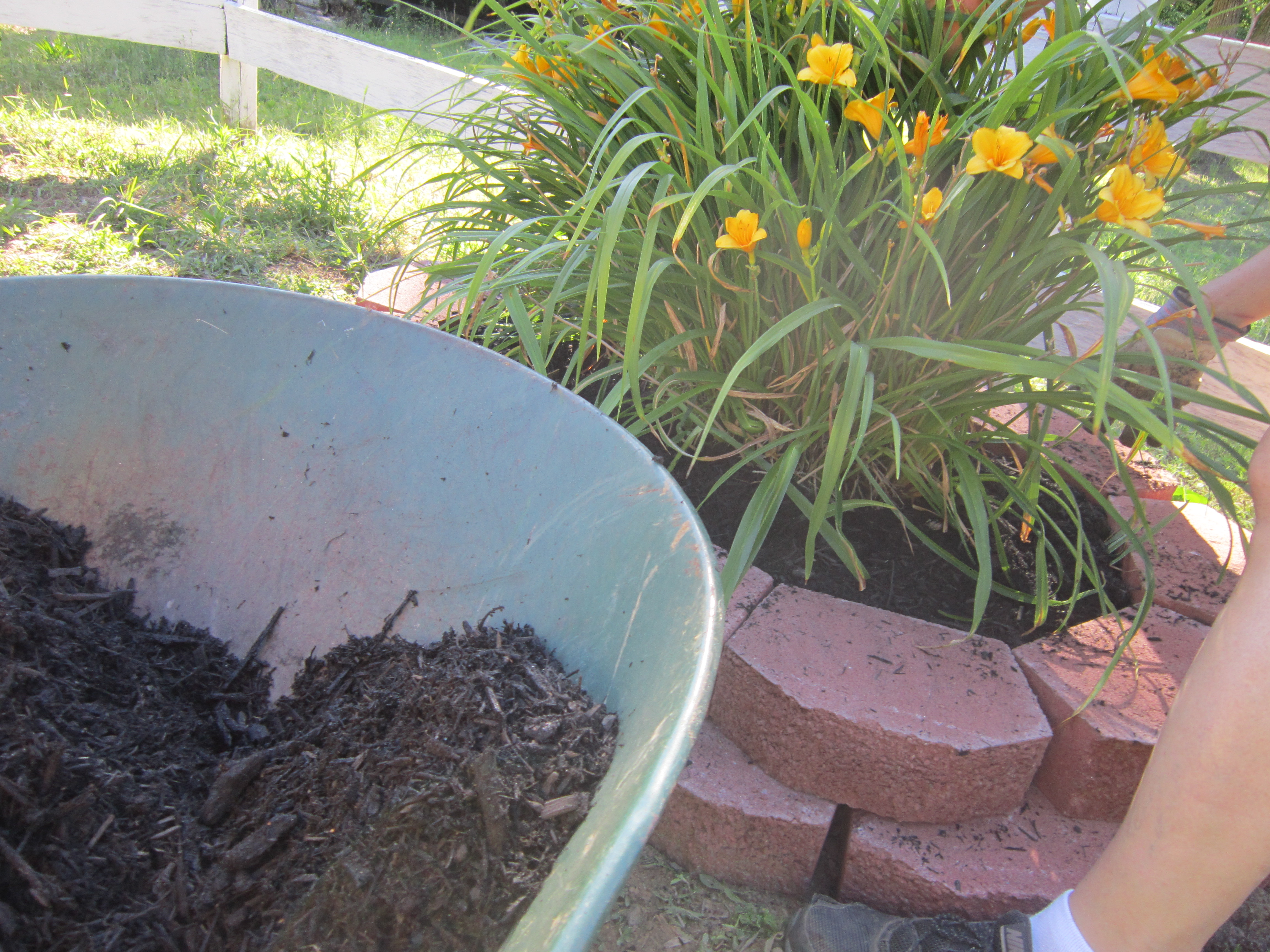 Picture of Add Mulch and Bedding Plants