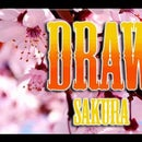 How to Draw Cherry Blossoms