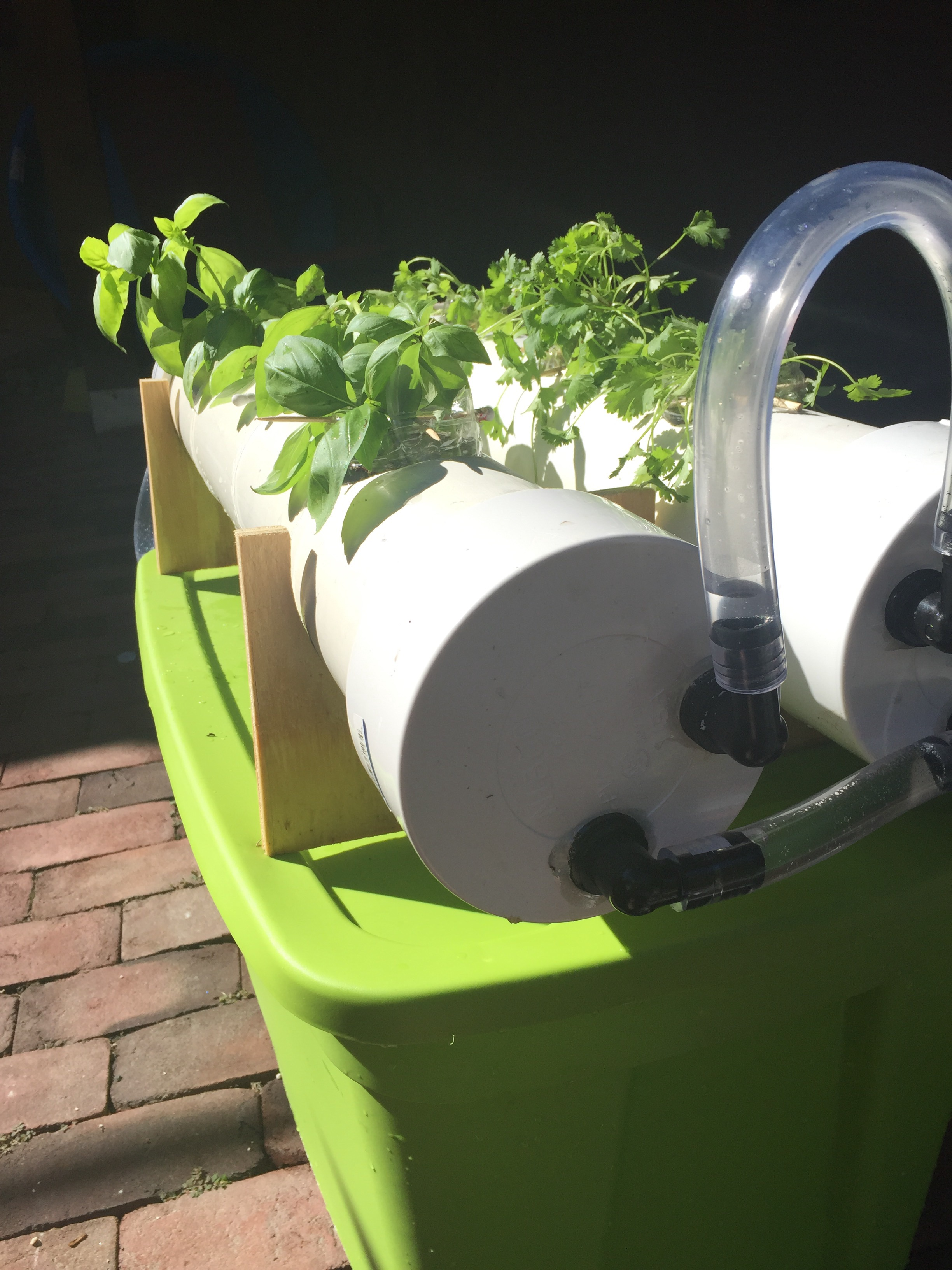 Picture of Herboponic- a Hydroponic Herb Garden