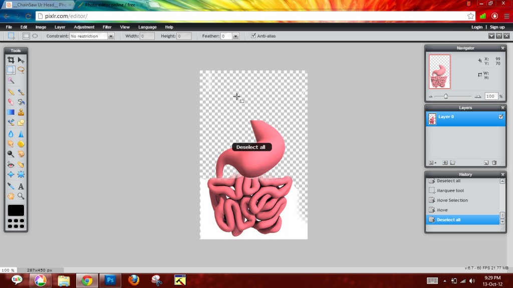 Picture of Stomach + Intestines