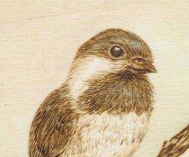 Pyrography: Step by Step Burn A Chickadee