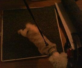 DIY Indoor Doggie Potty
