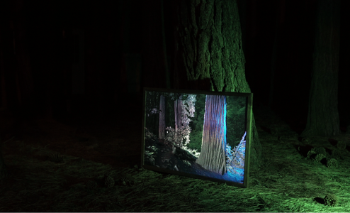 Extra: Projection Mapping