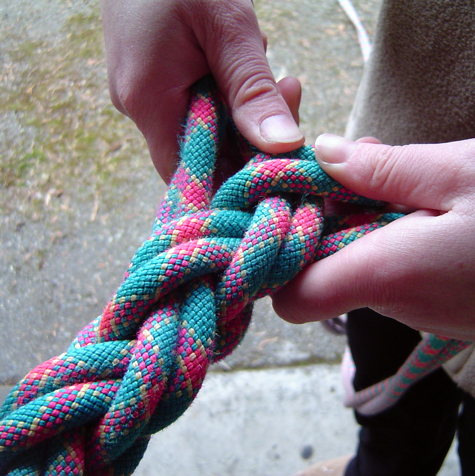 Picture of Braid