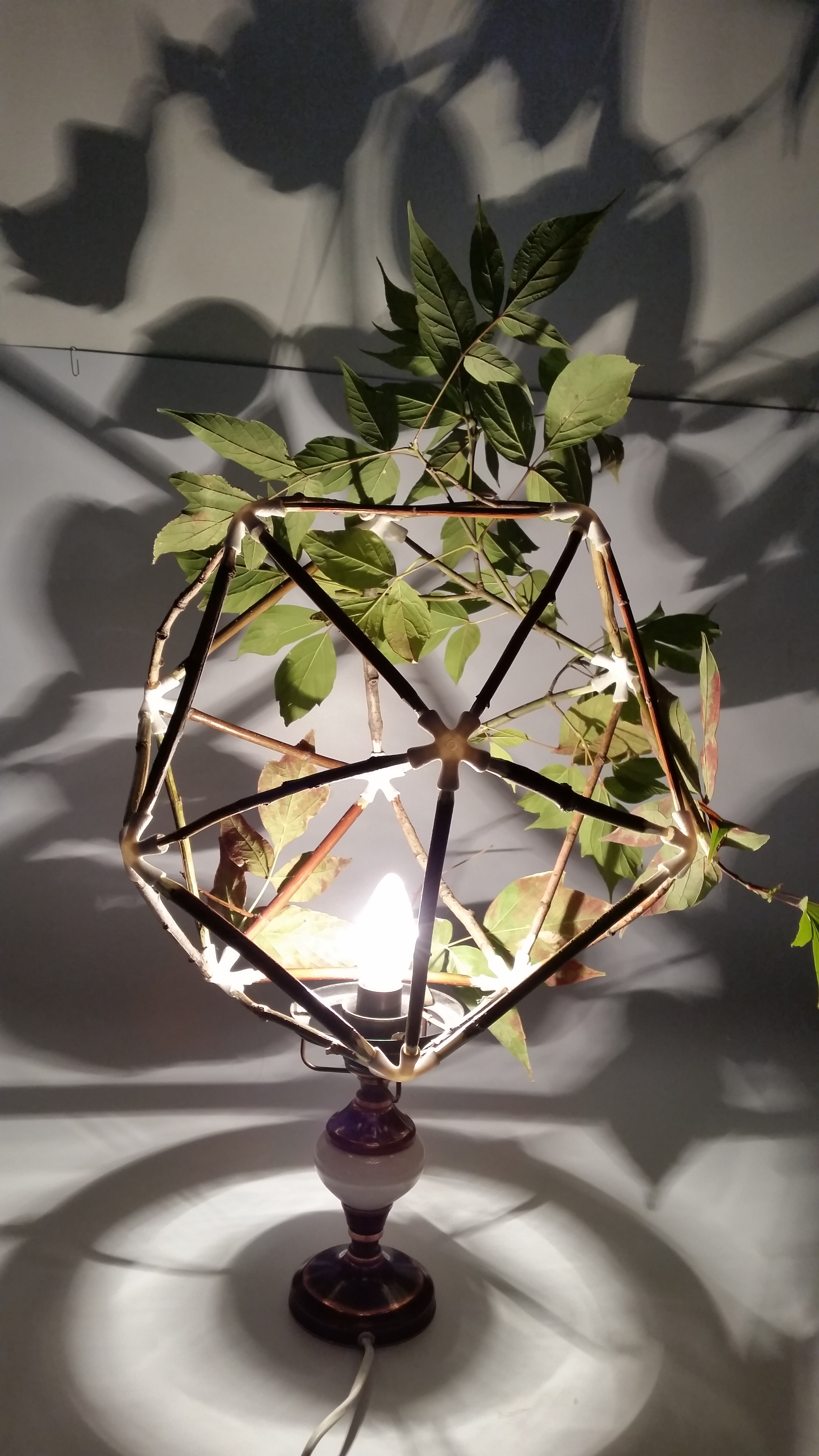 Picture of DIY Nature Lamp Shade