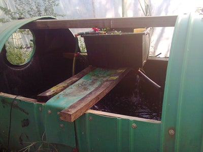 Converting the Fish Tank to an Aquaponic System