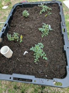 Add Gravel, Soil, and Plants