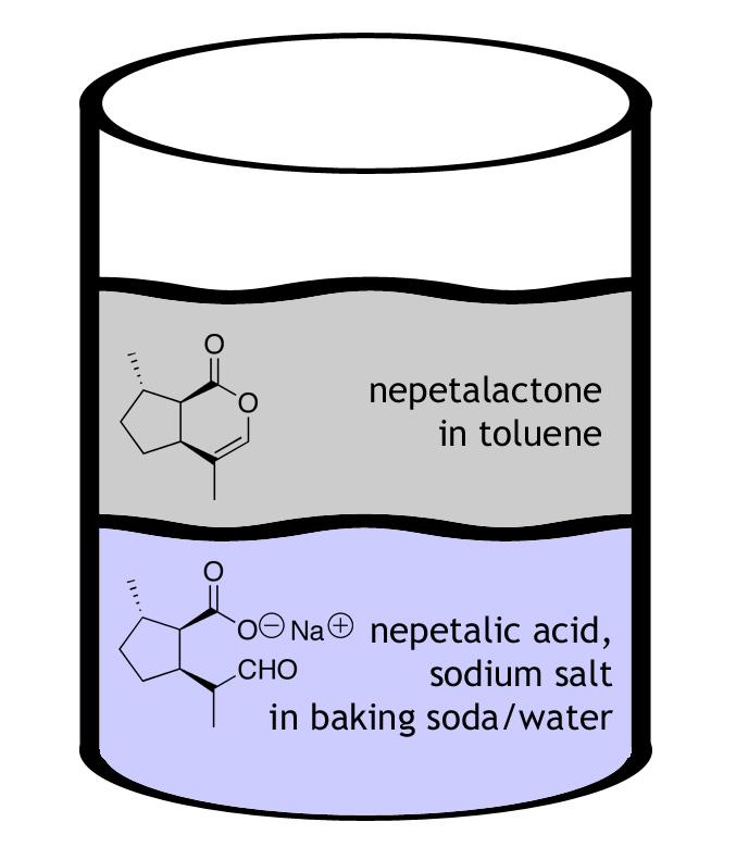Picture of Optional Sodium Bicarbonate Wash