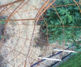 Heavy Duty Tomato Cages