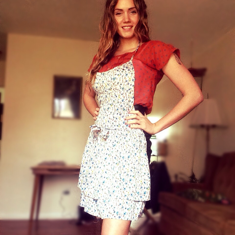 Picture of DIY Apron From Old Dress