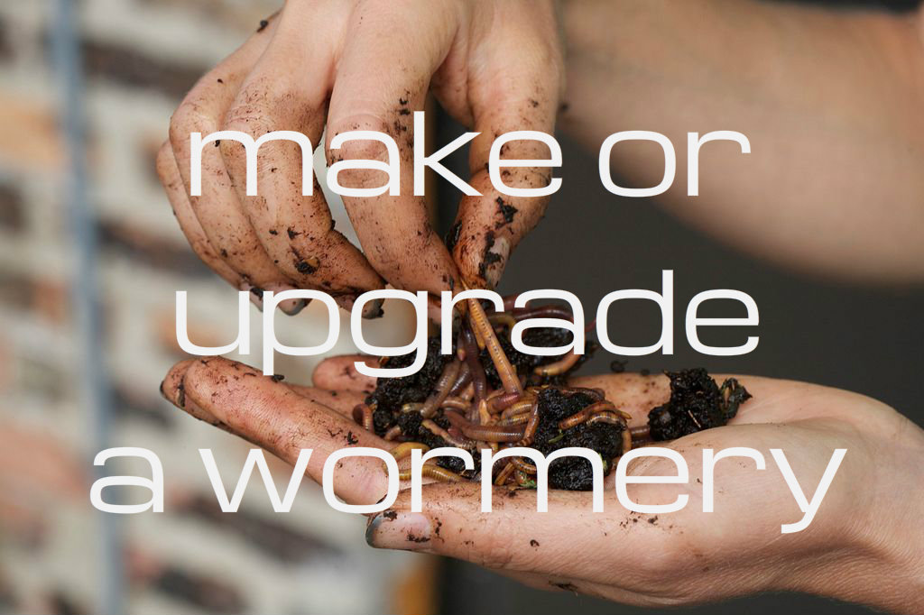 Picture of Make or Upgrade a Worm Composter
