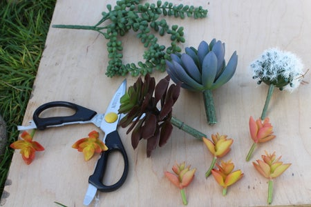 Trim Succulents and Add Gravel