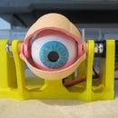 3D Printed Animatronic Eye Mechanism on the Cheap
