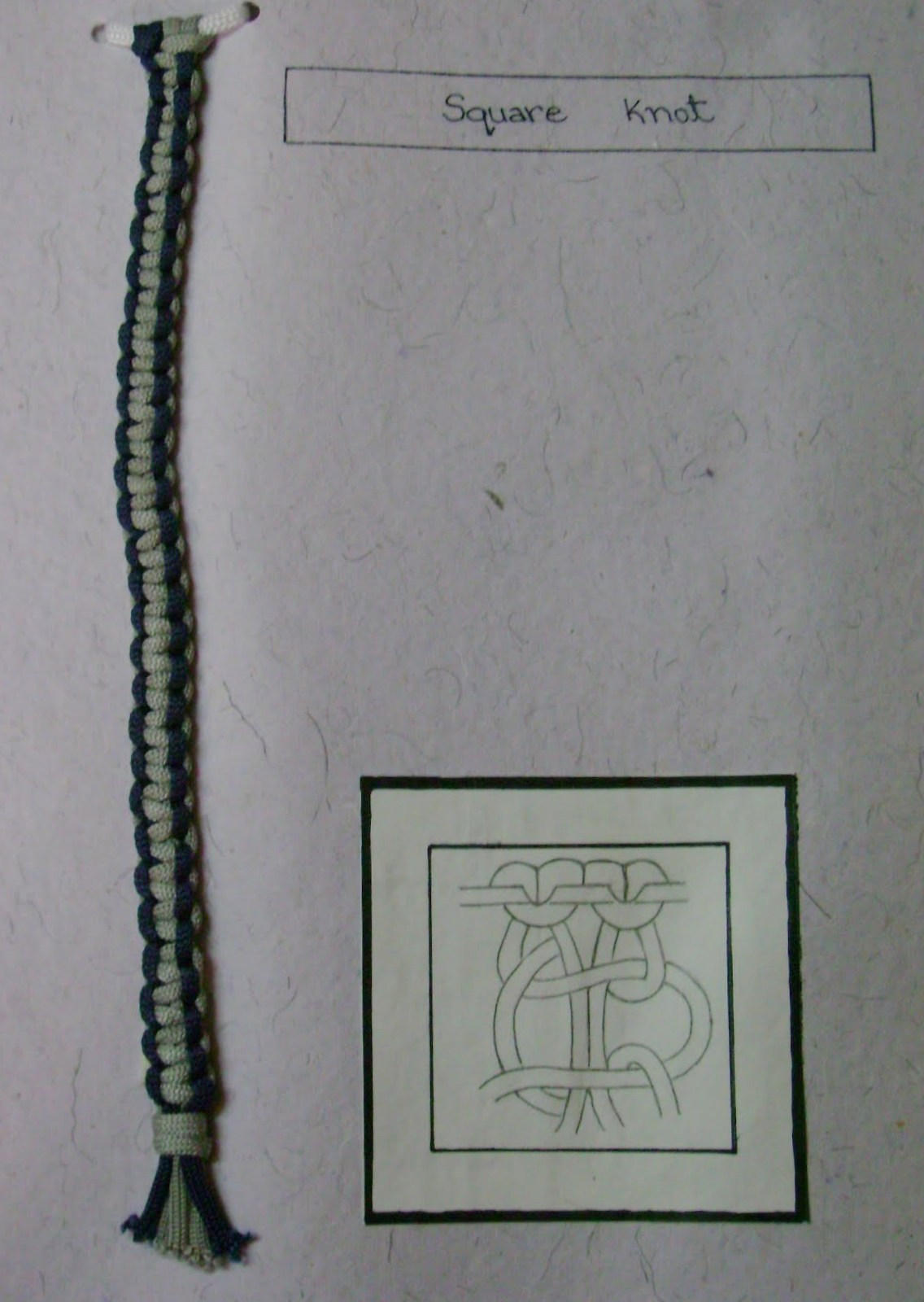 Picture of Know the Knots..