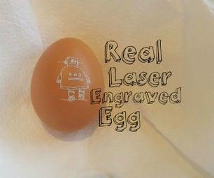 Real Laser Engraved Egg,
