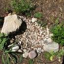 How to make a dry pond