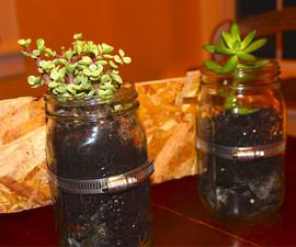 DIY Mason Jar Planters