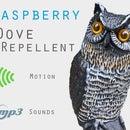 Raspberry Pi Doves Repellent