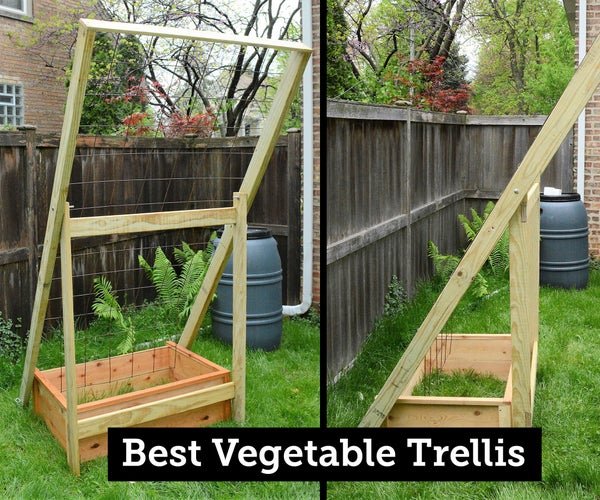 My Best Vegetable Trellis: Durable, Collapsible, Flexible