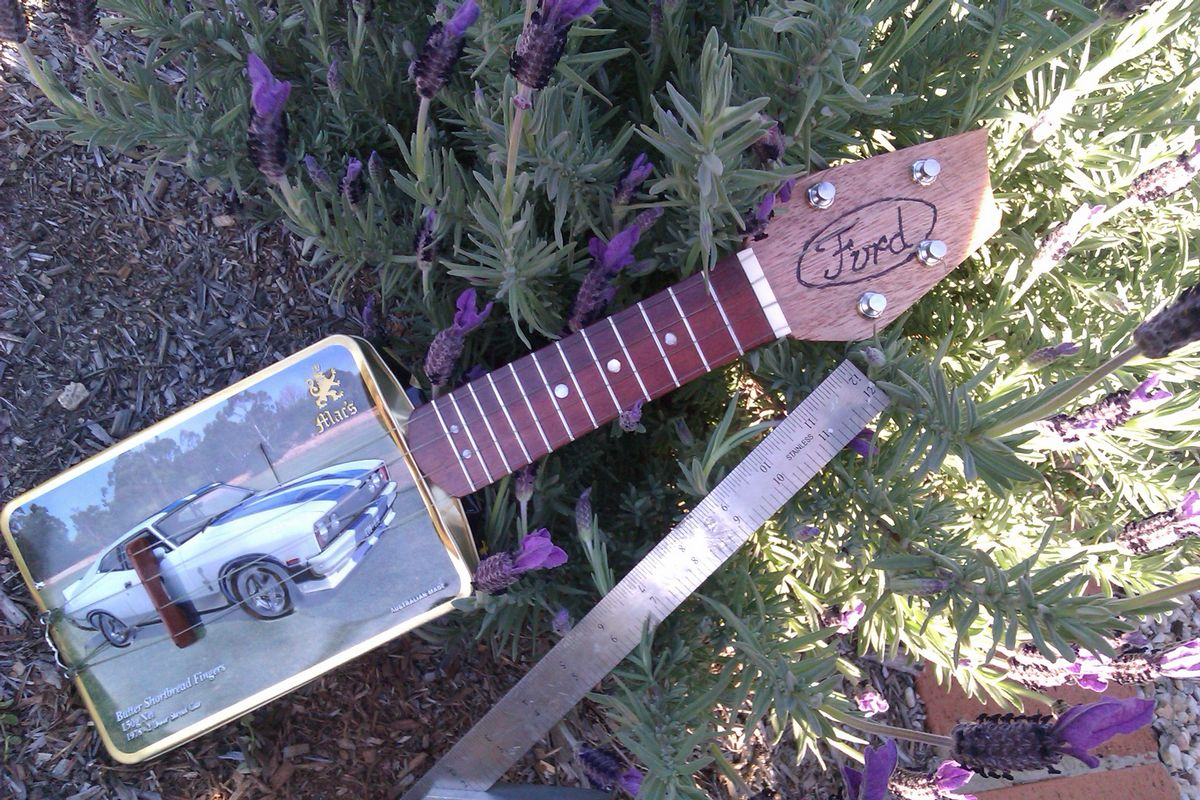 Picture of Ford Mini Glovebox Guitar/ukulele