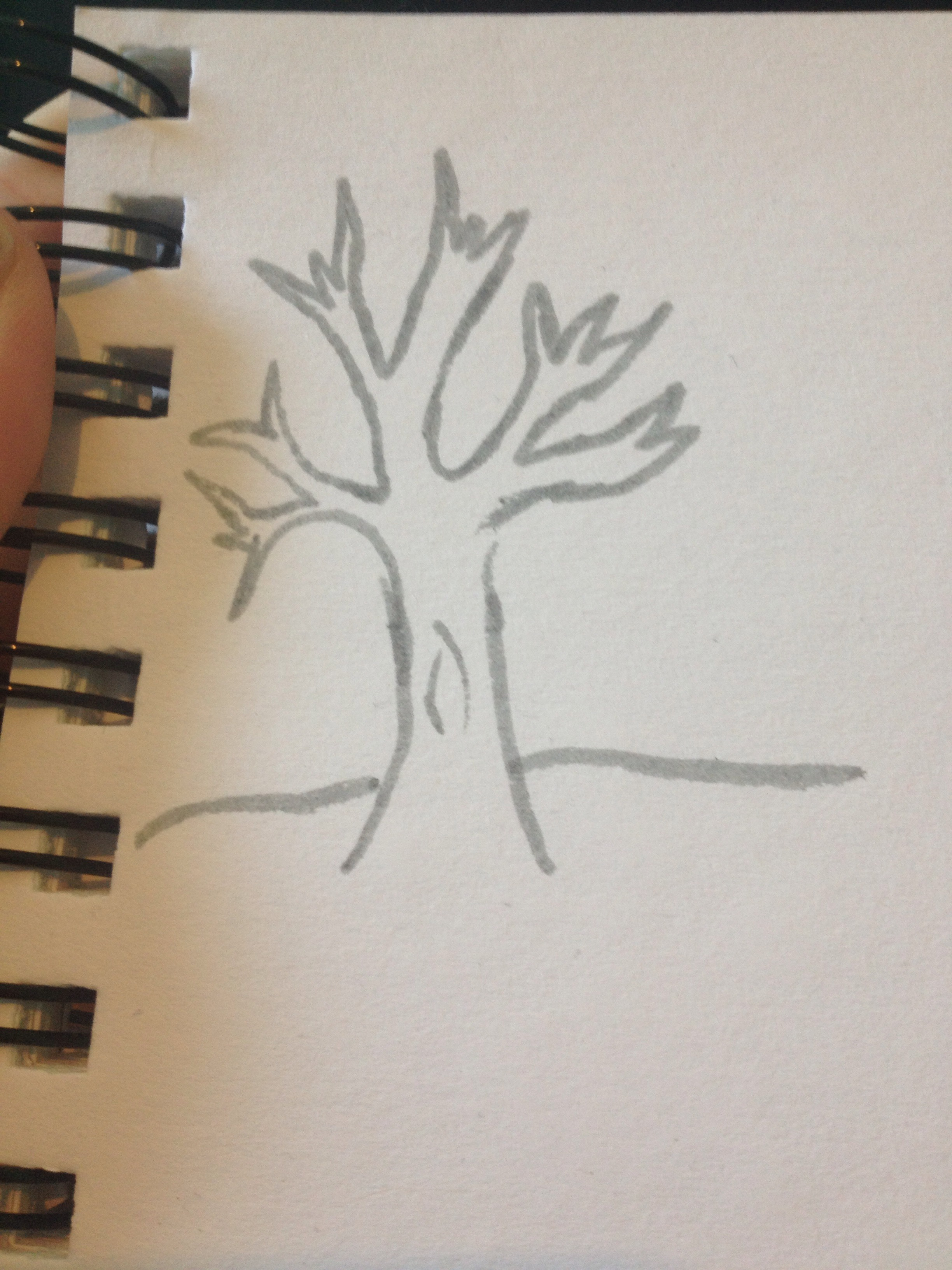 Picture of How To: Draw a Bare Tree