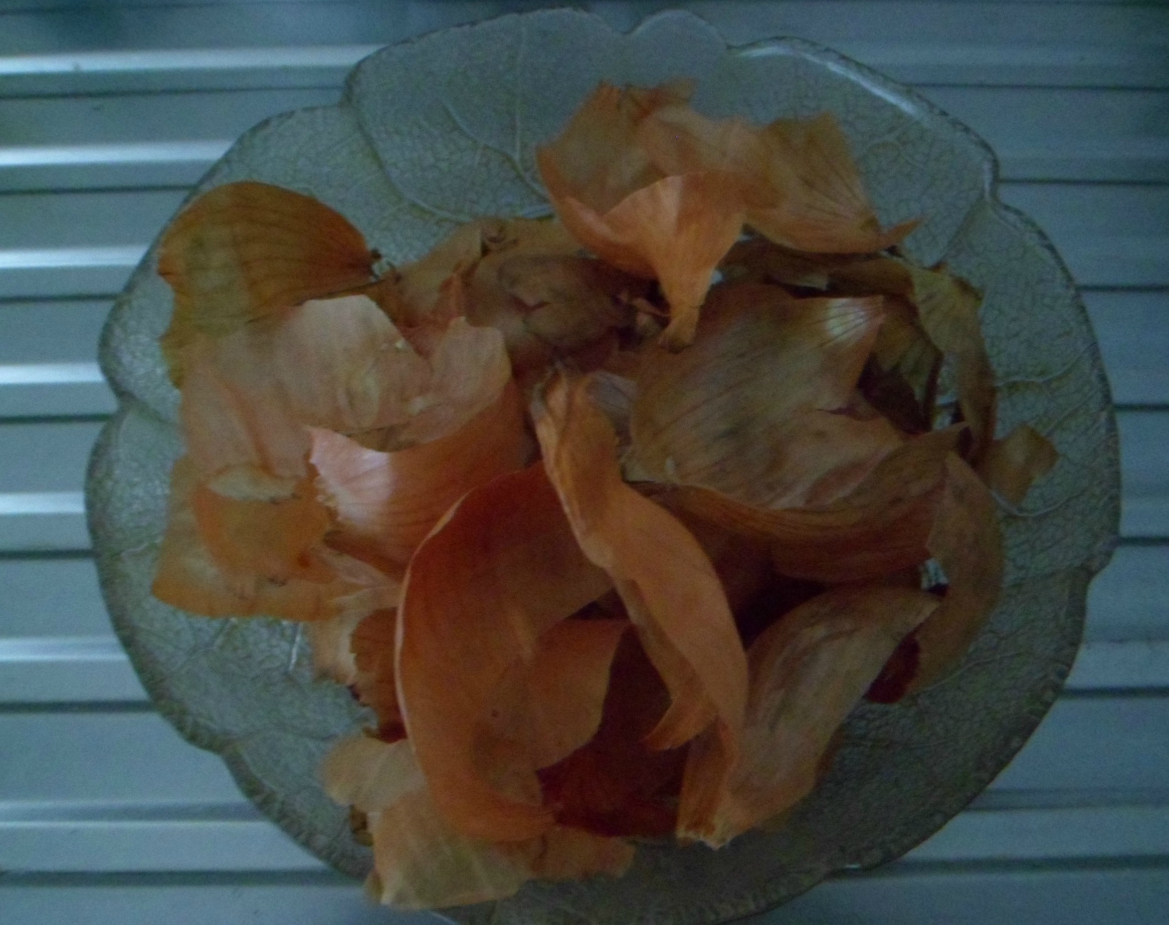 Picture of Use of Onion Skins in Dyeing