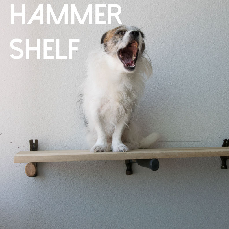 Picture of The Hammer Shelf