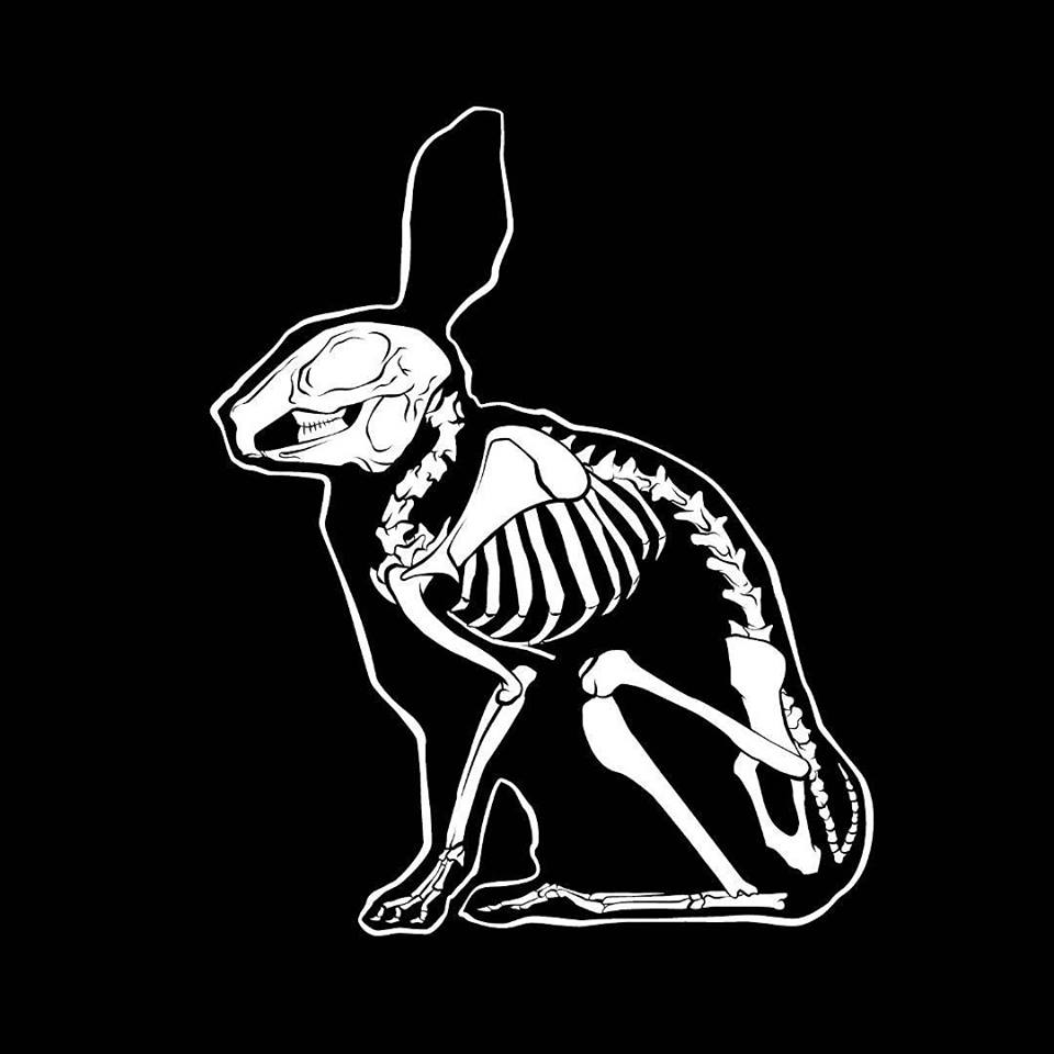 Picture of The Skeleton Rabbit