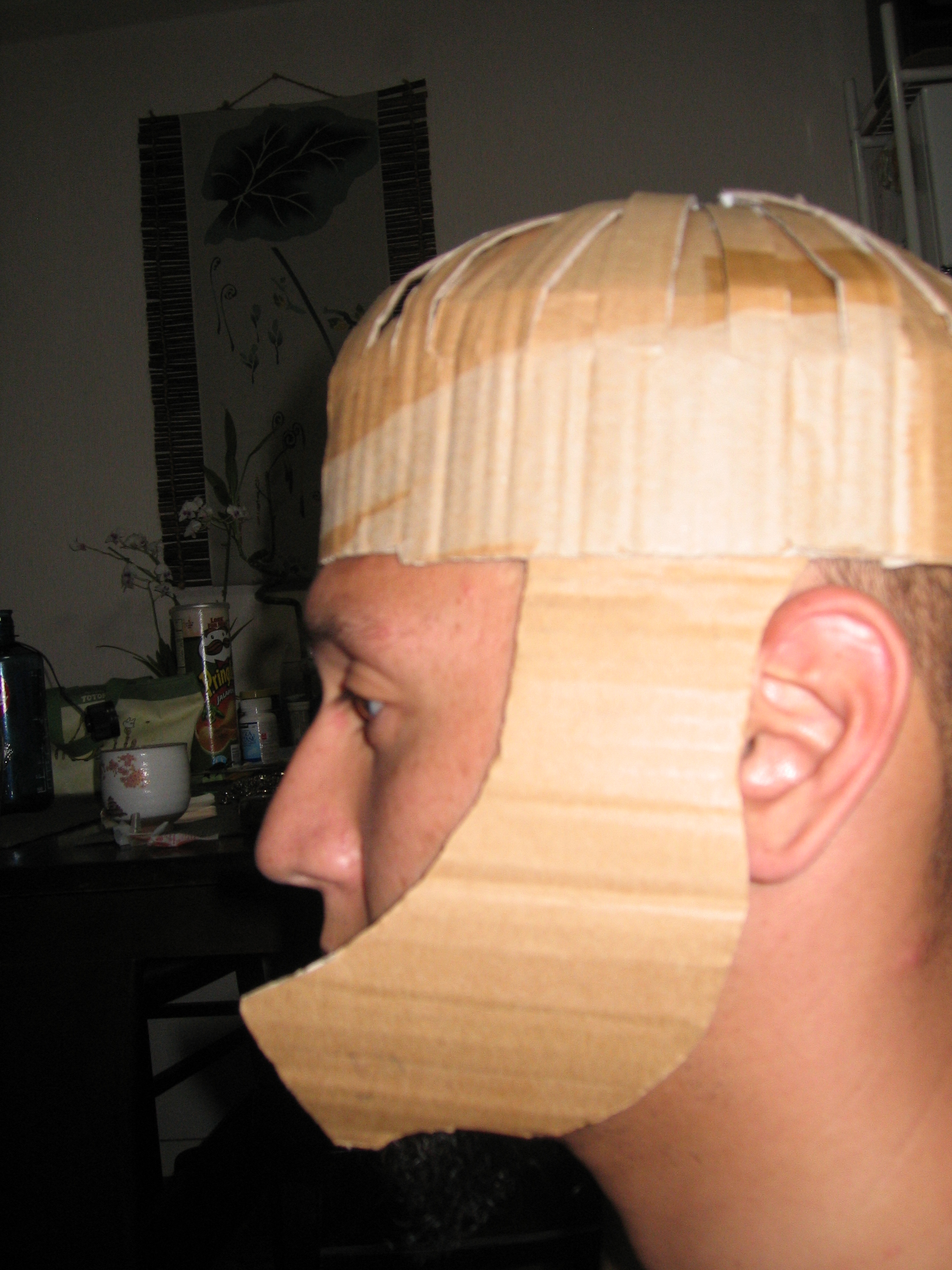 Picture of Start the Helmet