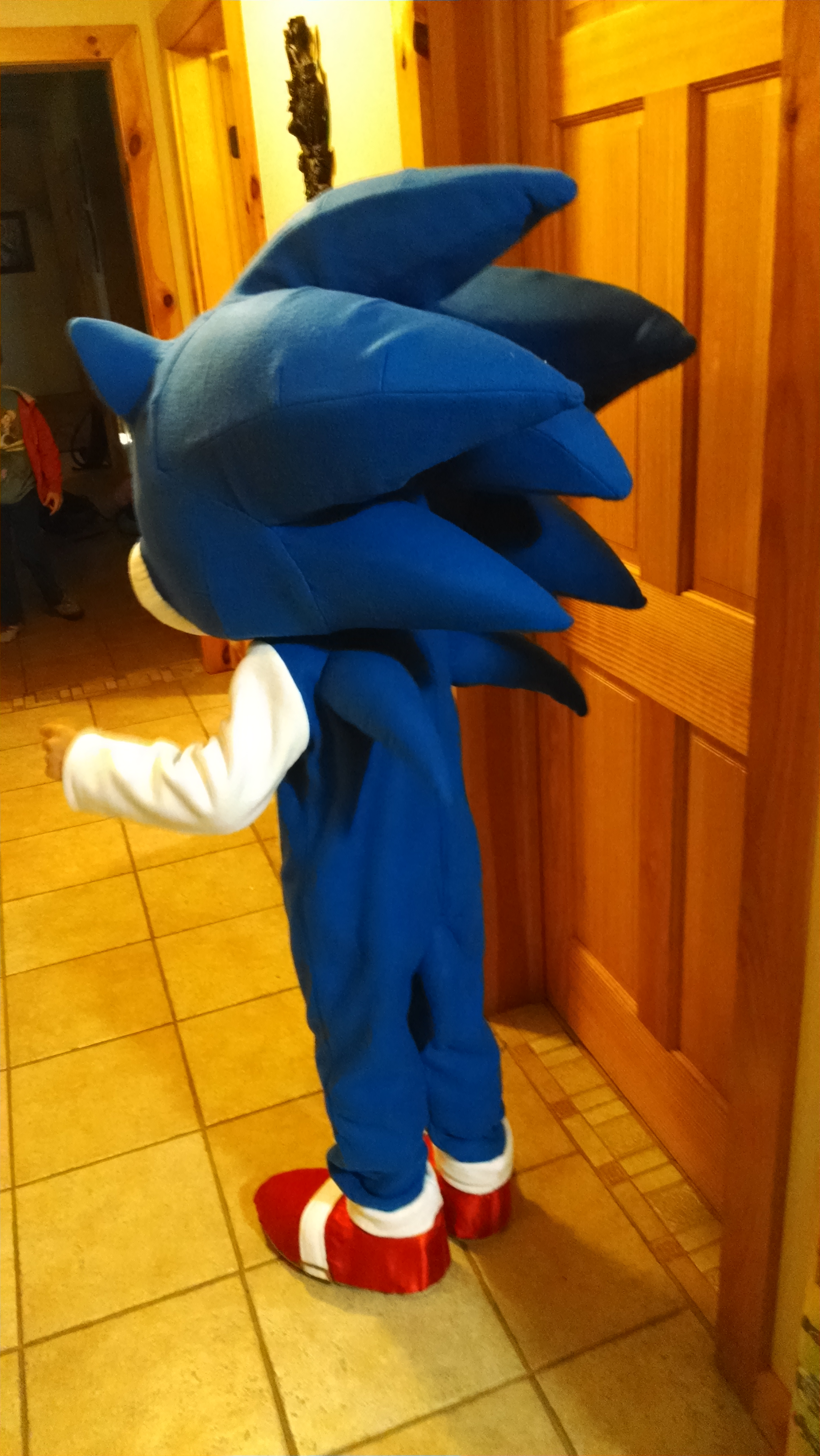 Picture of Sonic's Body