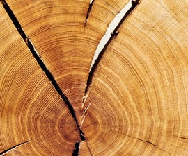 Choosing Greener Wood