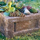 How to Make a Garden Trough (Hypertufa Planter)