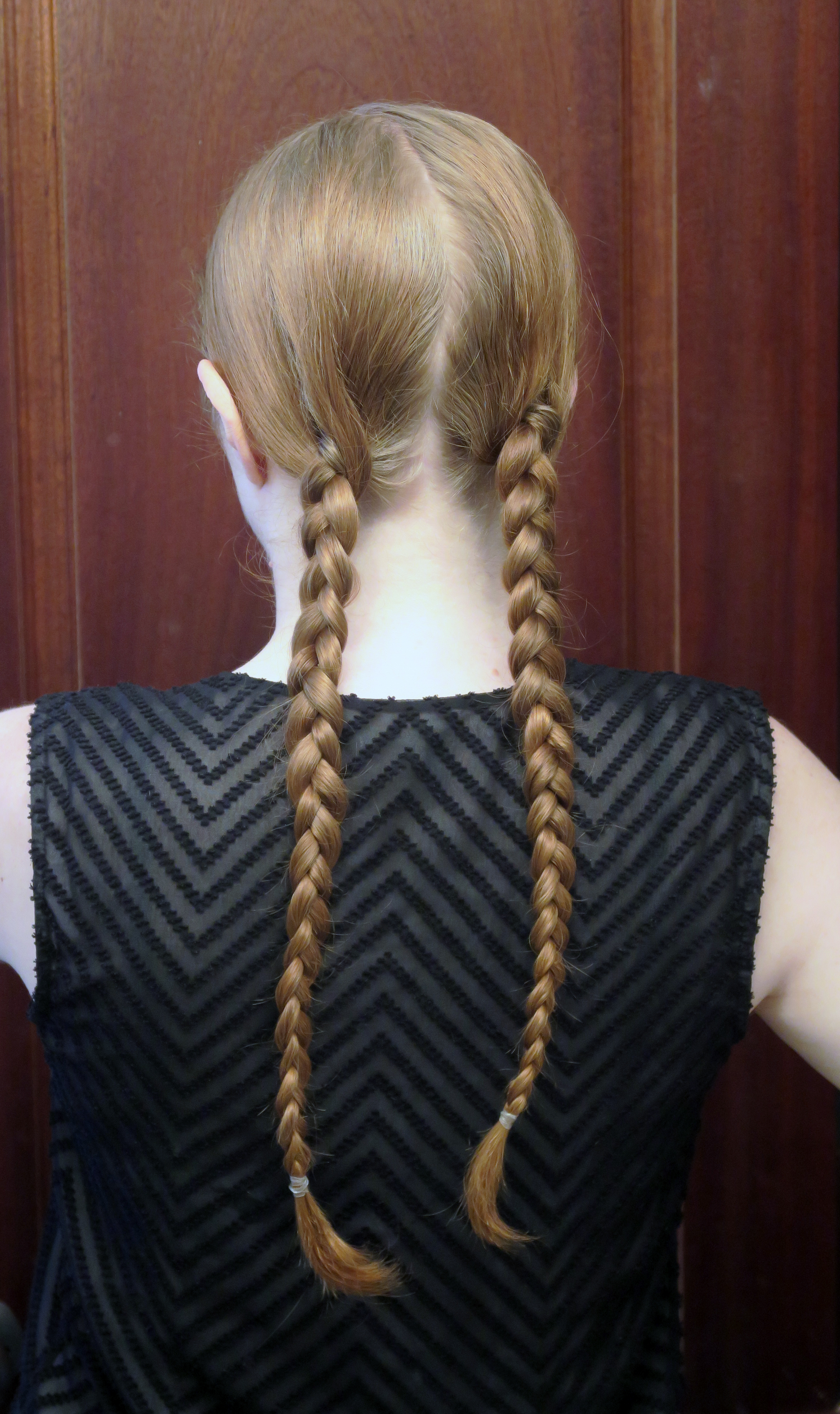 Picture of Braids
