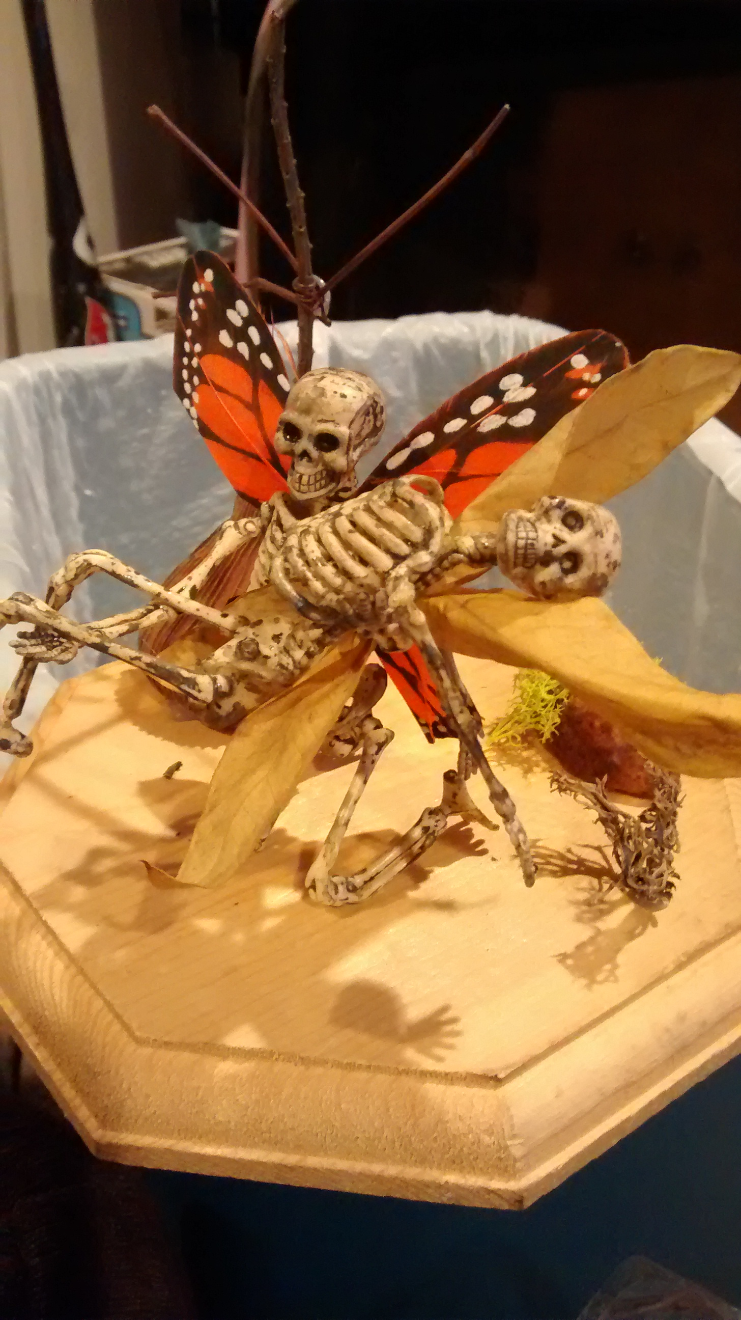 Picture of Dead Fairies