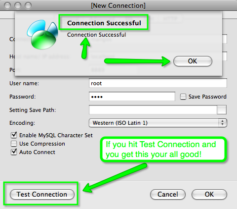 Picture of Test the Connection.