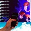 DIY iPhone controller for Raspberry-Pi (OSC)