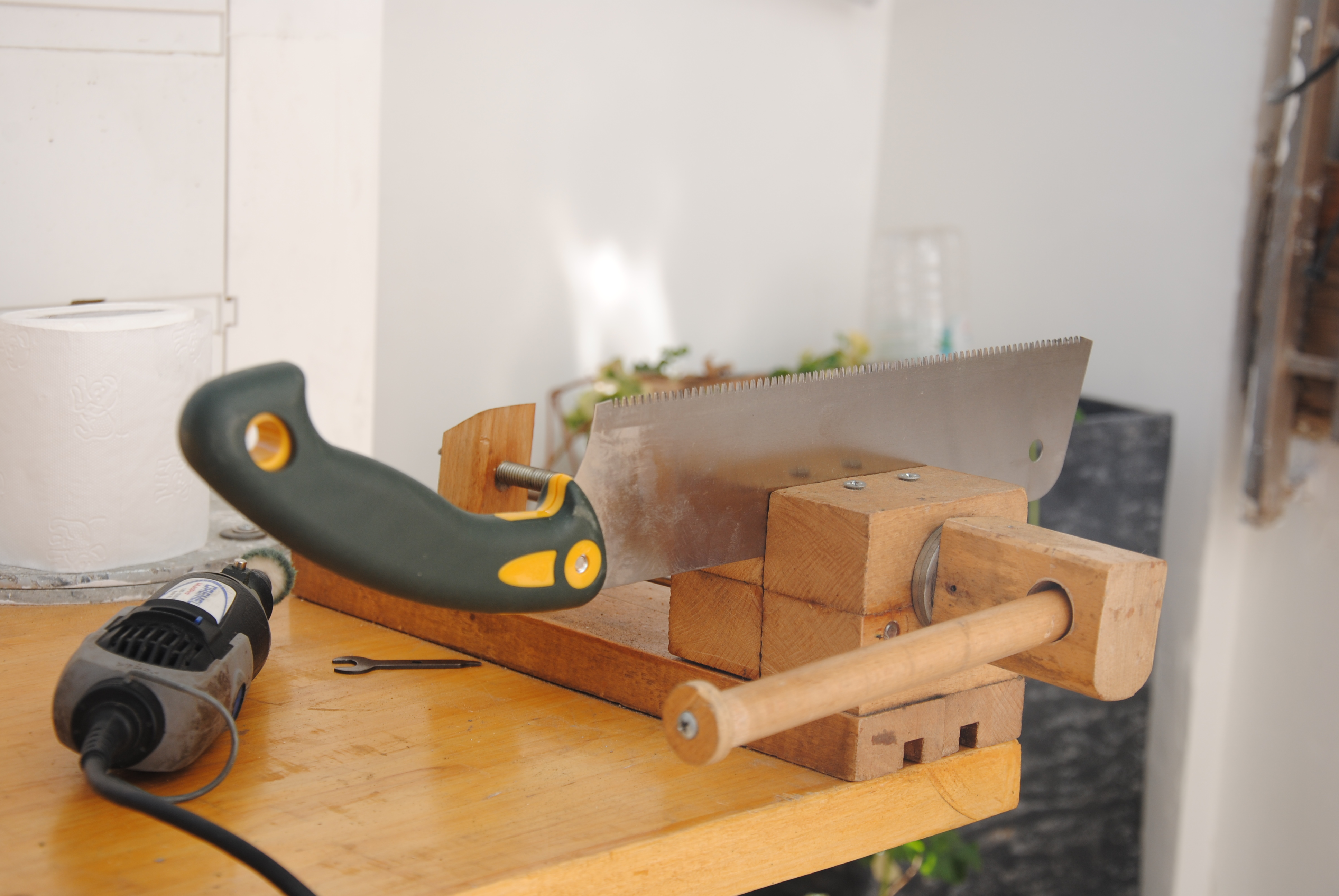 Picture of Secure the Saw in a Vise