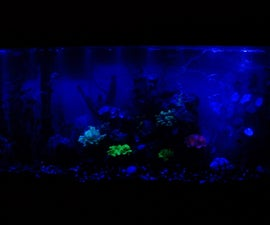 Daylight/moonlight two-way LED fishtank light