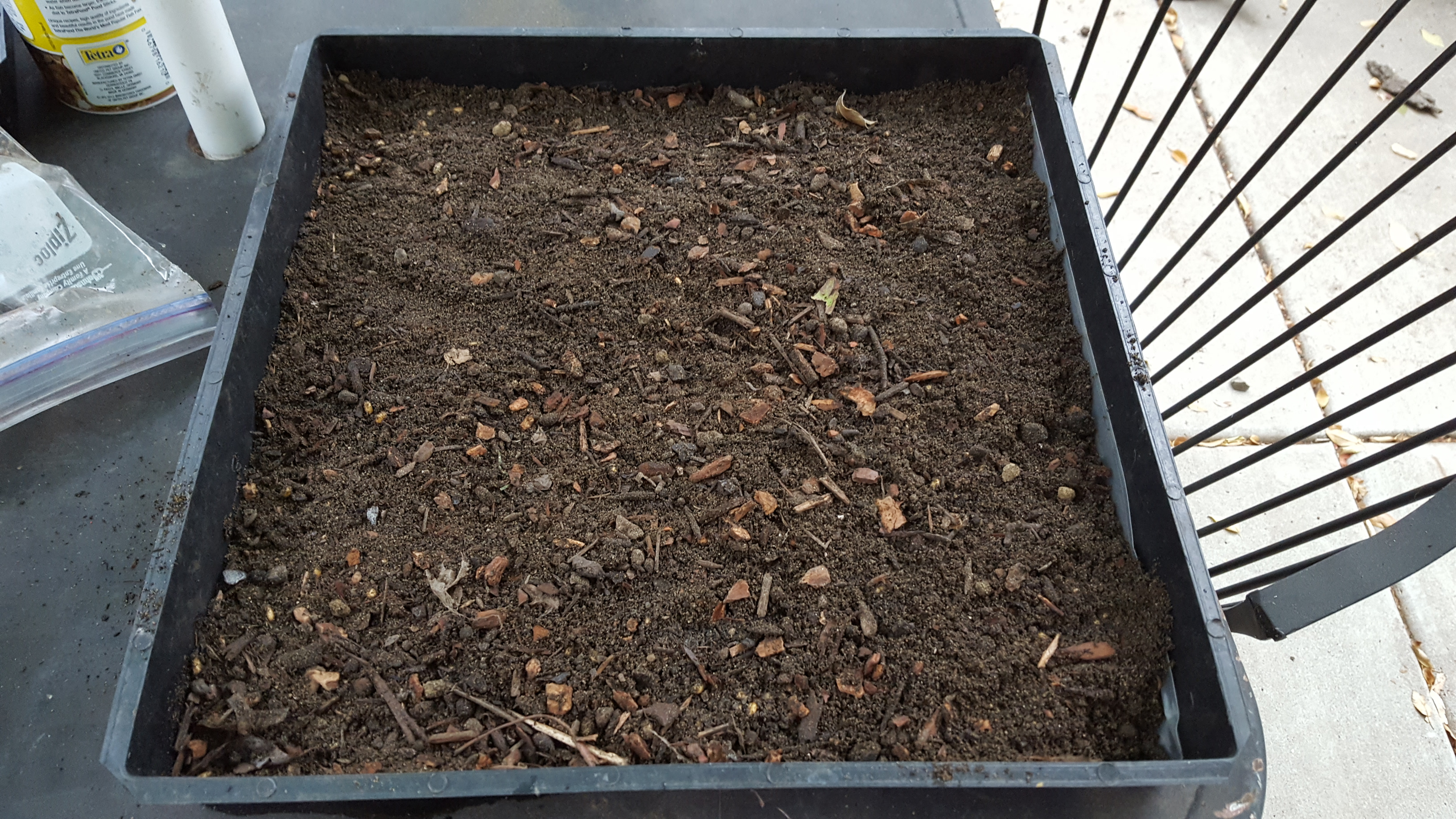 Picture of Sprouting Your Seeds