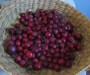 Crab Apple Fabric Dyeing