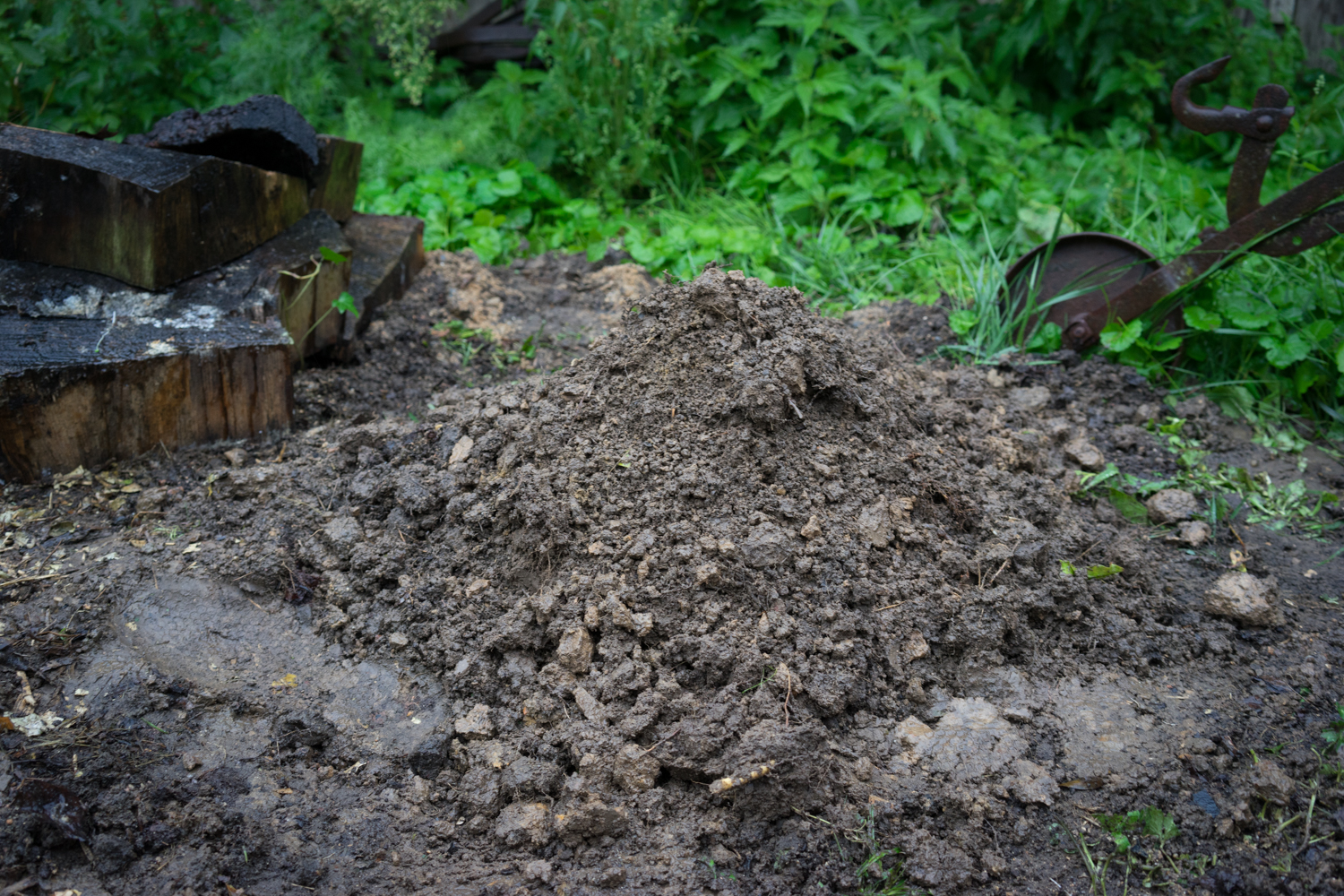 Picture of Cover With Soil