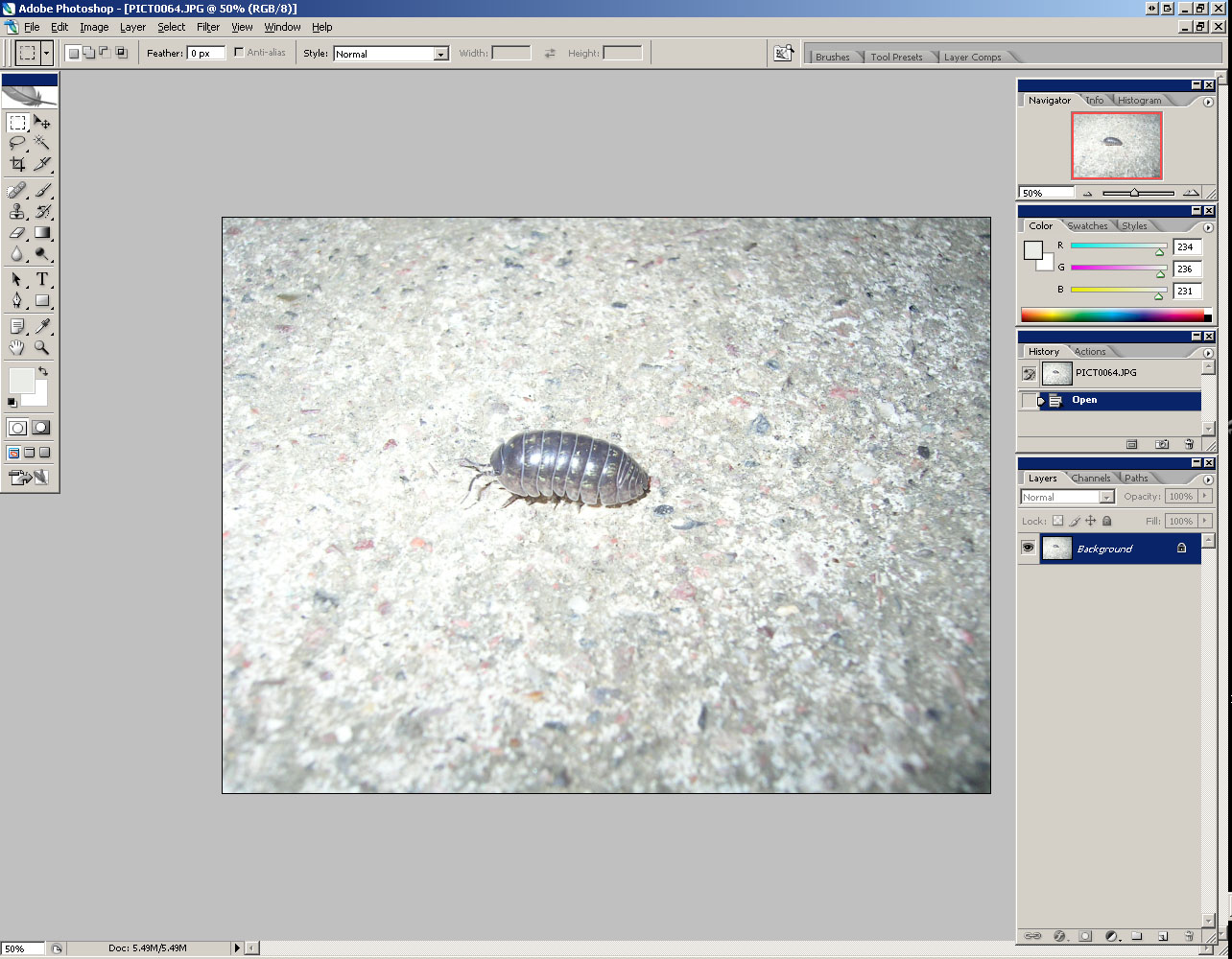 Picture of Open Your Image in Photoshop