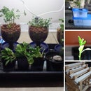 Hydroponics and Aquaponics Guides