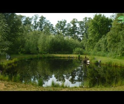 HOW TO BUILD ALL NATURAL POND WITHOUT LINER | LOW COST+MAINTENANCE | YOUR OWN BIG BACK YARD WATER HABITAT