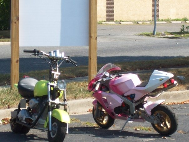 Picture of The Bikes