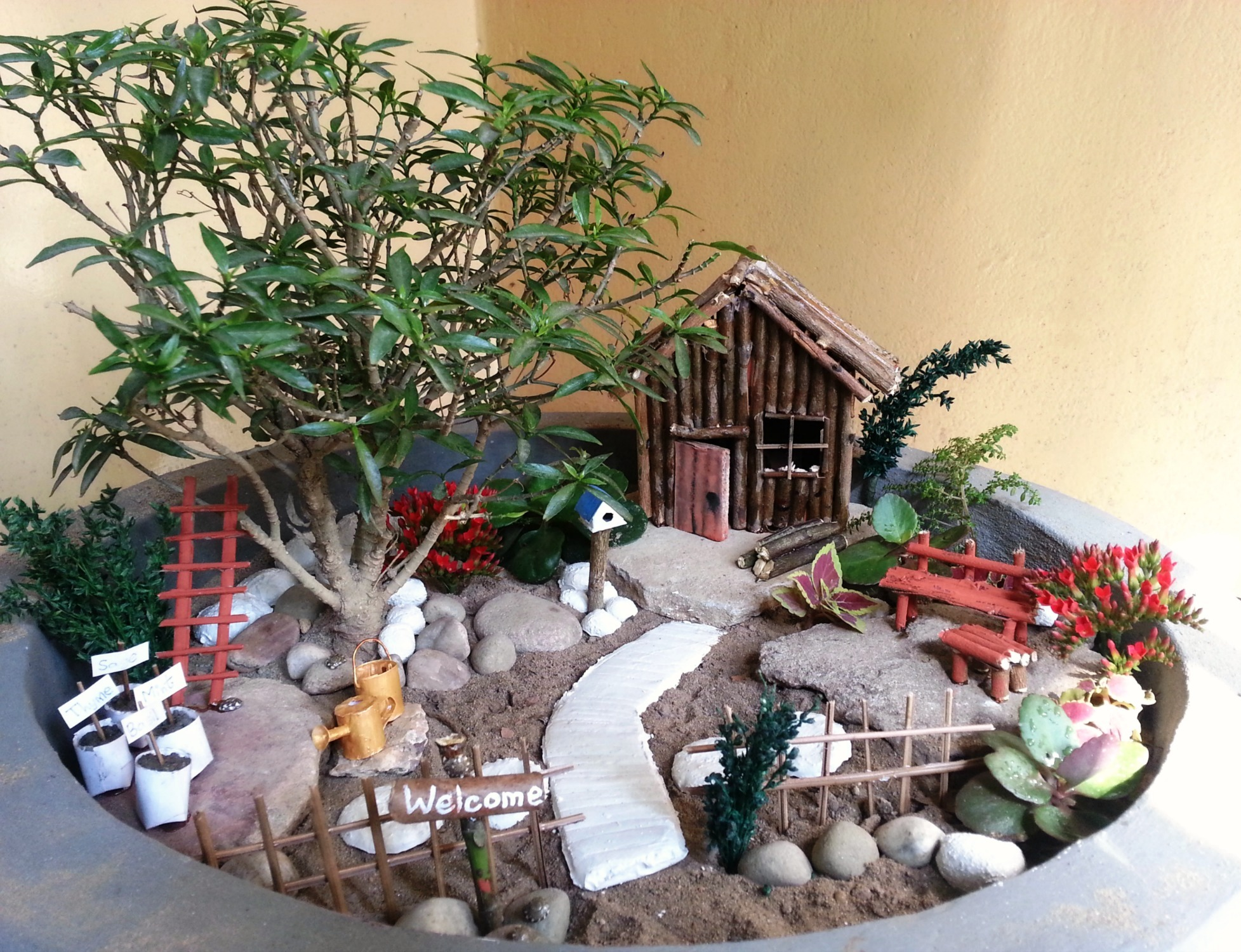 Picture of Decorate the Garden
