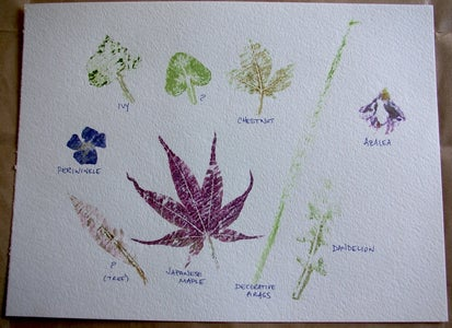 Try Different Leaves and Flowers