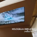 Hologram Display - Part 1 (Build - on going)